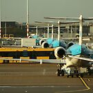The Line-up by EHAM-spotter