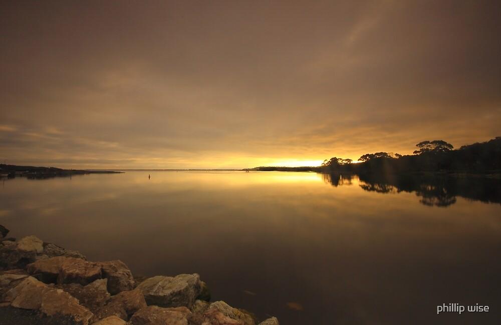 Duck Dawn by phillip wise