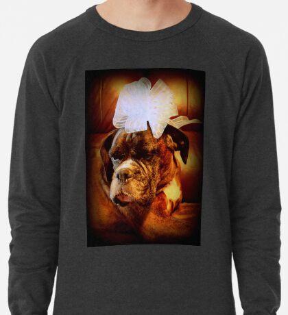 Boxer-Hund mit Bogen - Boxer-Hunde-Serie Leichtes Sweatshirt