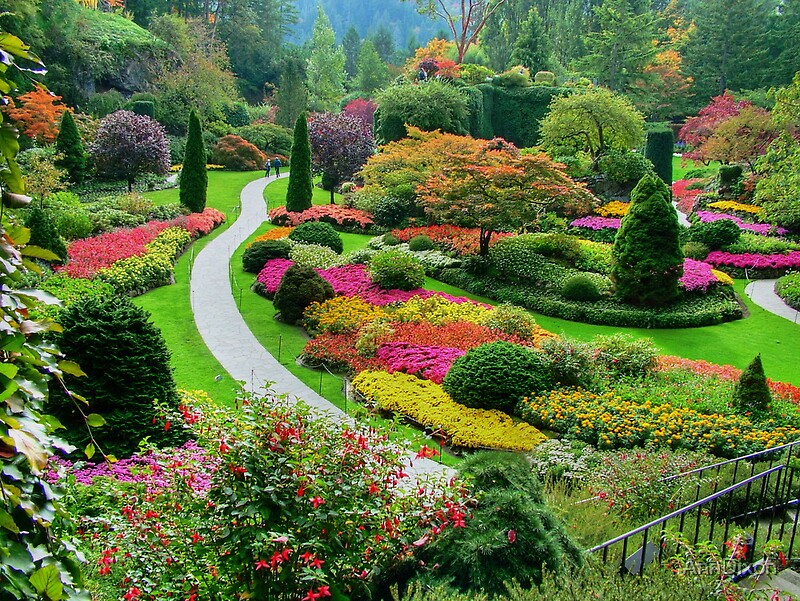 Quot Butchart Gardens Bc Canada In The Fall Quot By Anndixon