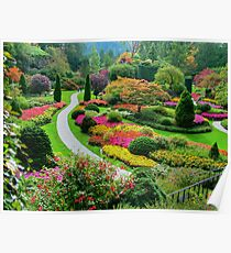 Butchart Gardens BC, Canada in the Fall Poster