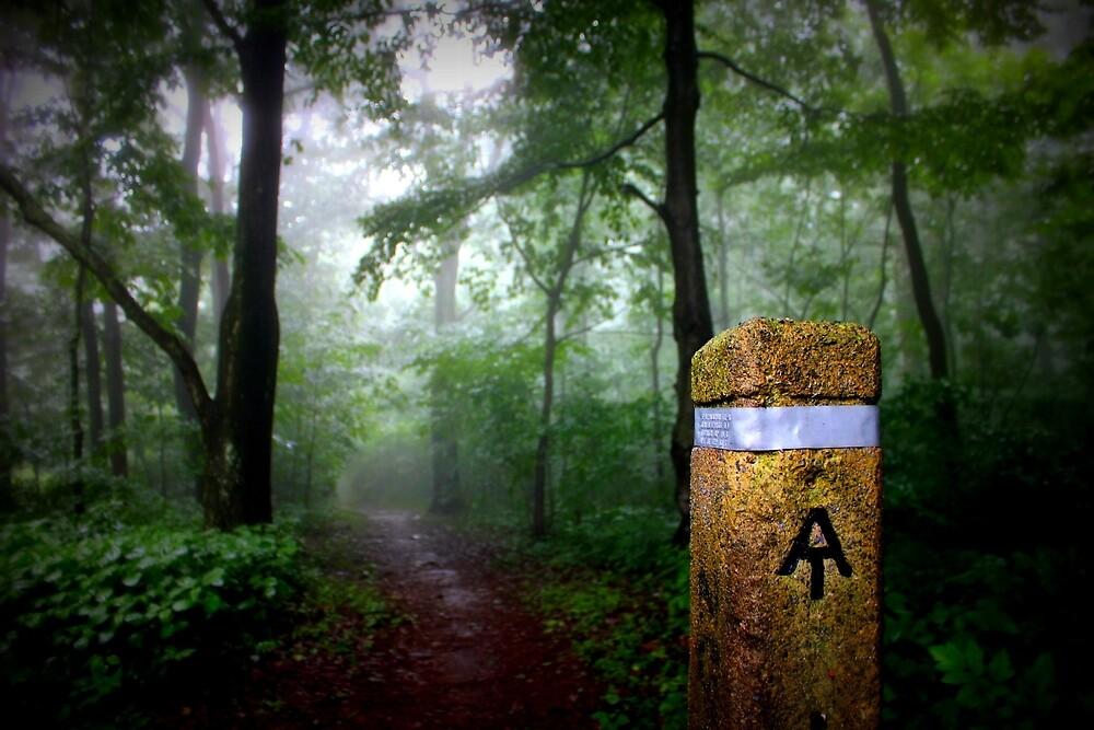 Appalachian Trail Magic by Cecilia Carr