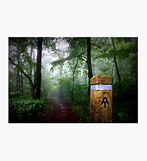 Appalachian Trail Magic Photographic Print