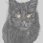 black cat with yellow eyes by jackpoint23