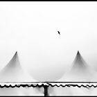 Fliegender Vogel ... von Angelika  Vogel
