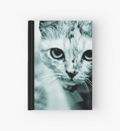 Meow....where are you mommy? : On Featured Work Hardcover Journal