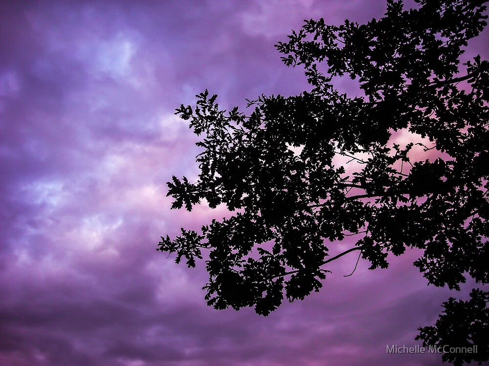 Purple Tree Silhouette by Michelle McConnell