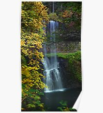 Lower South Falls West View Poster