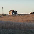 homestead 49 by Lisa Sall