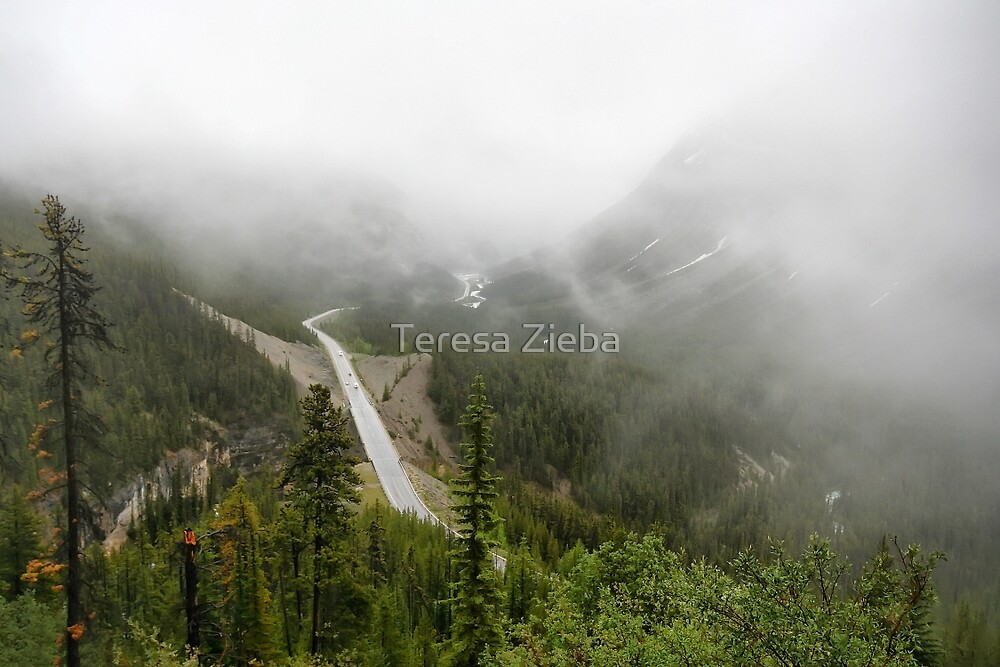 Driving in a Fog by Teresa Zieba