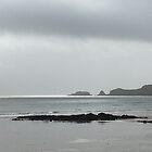 Saundersfoot Beach  by Neill Parker