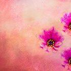 Three Pink Romance by Gben