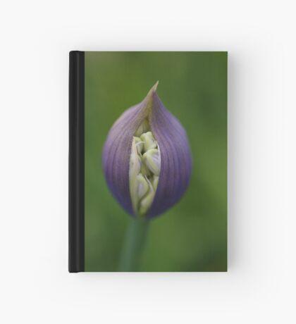 emergence Hardcover Journal