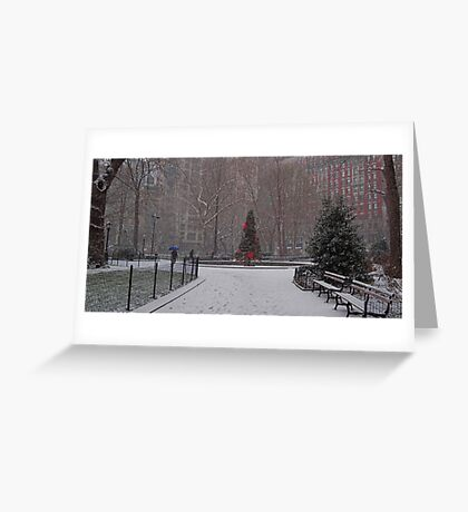 A Christmas Tree In the Snow, Madison Square Park, NYC Greeting Card