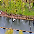 3 Docks in a Row by Bob Hortman