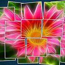 Flower Collage by Teresa Zieba