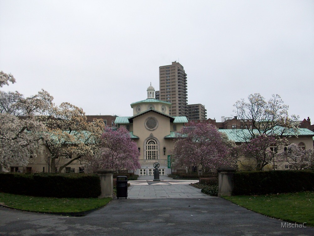Brooklyn Botanical Gardens Visitor Center with Magnolias by MischaC