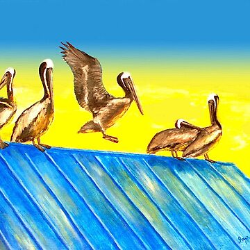 Pelicans on Rooftop by janmarvin