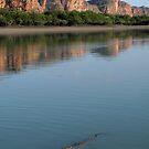 Crocodile Dawn by Reef Ecoimages