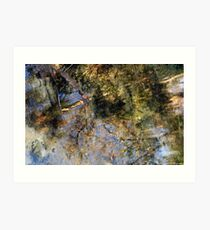 Rainbow Springs Art Print
