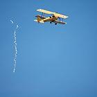 Temora Airshow -Tiger Moth VH-UVZ ribbon cut,2007 by muz2142