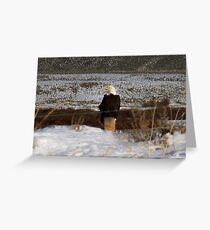 fence eagle Greeting Card