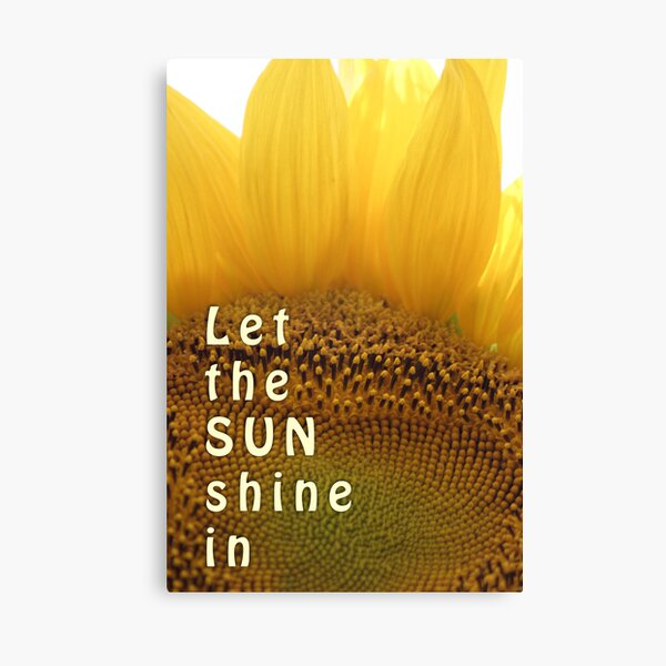 Let the sun shine in (sunflower) Canvas Print