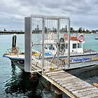 Fishing Charters Forster 462 by kevin Chippindall