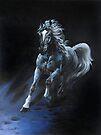 """""""White Stallion"""" Oil on Canvas by Sara Moon"""