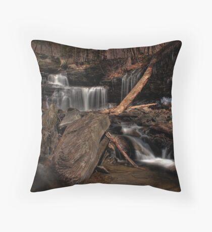R.B. Ricketts Falls Throw Pillow