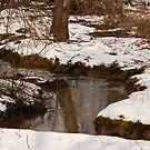 STREAM BED WITH SNOW by RGHunt