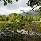 Lakeside by BengLim