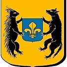 Coat of Arms of Blois, France by PZAndrews