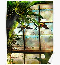 Hanging Out Orchid Style Poster