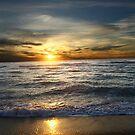 Sunset by Scott Braun