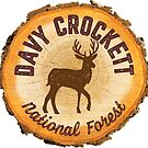 Davy Crockett National Forest by ginkgotees