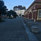 Wellington Waterfront Buildings by Michael McGimpsey