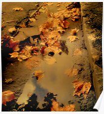 Auburn Rain Poster