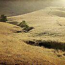 Mission Peak Sunrise by Ellen Cotton