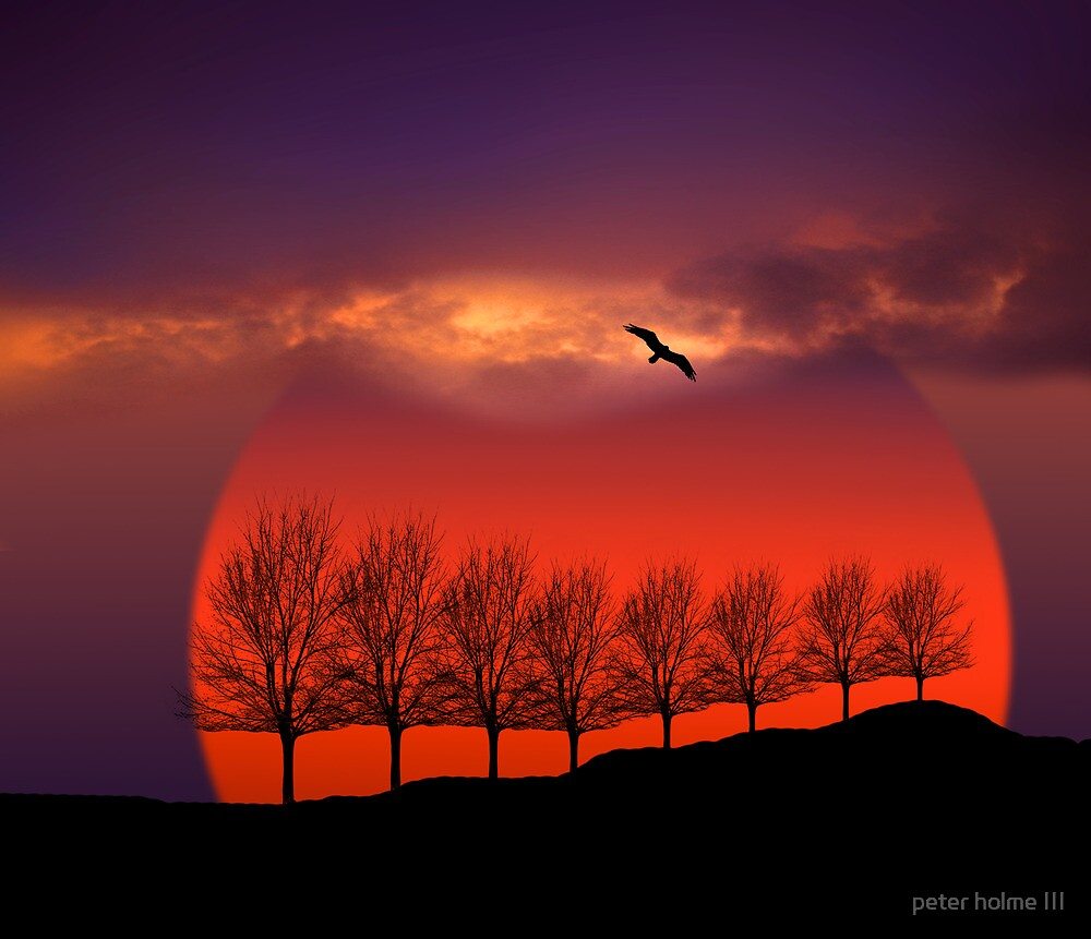 814 by peter holme III