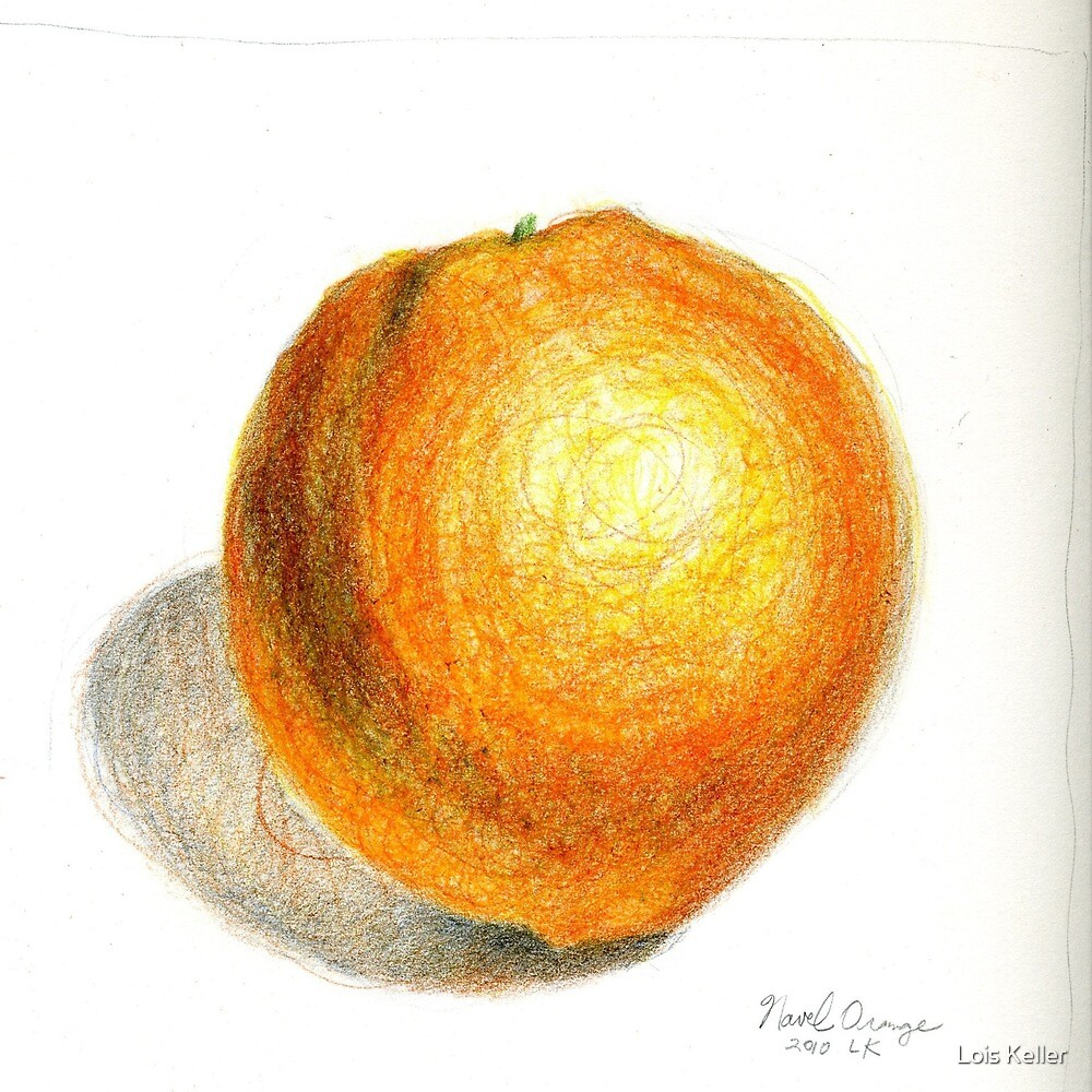 Navel Orange by Lois Keller