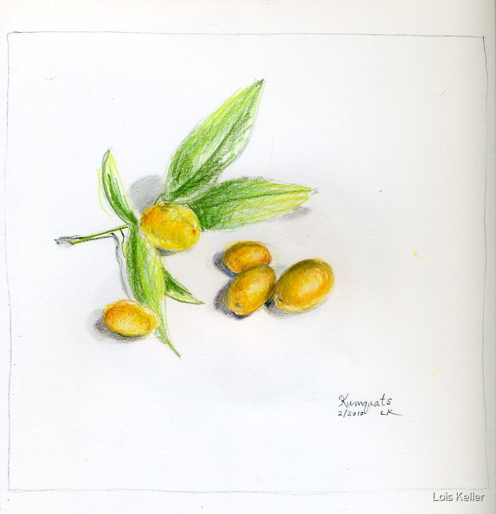 Kumquats by Lois Keller