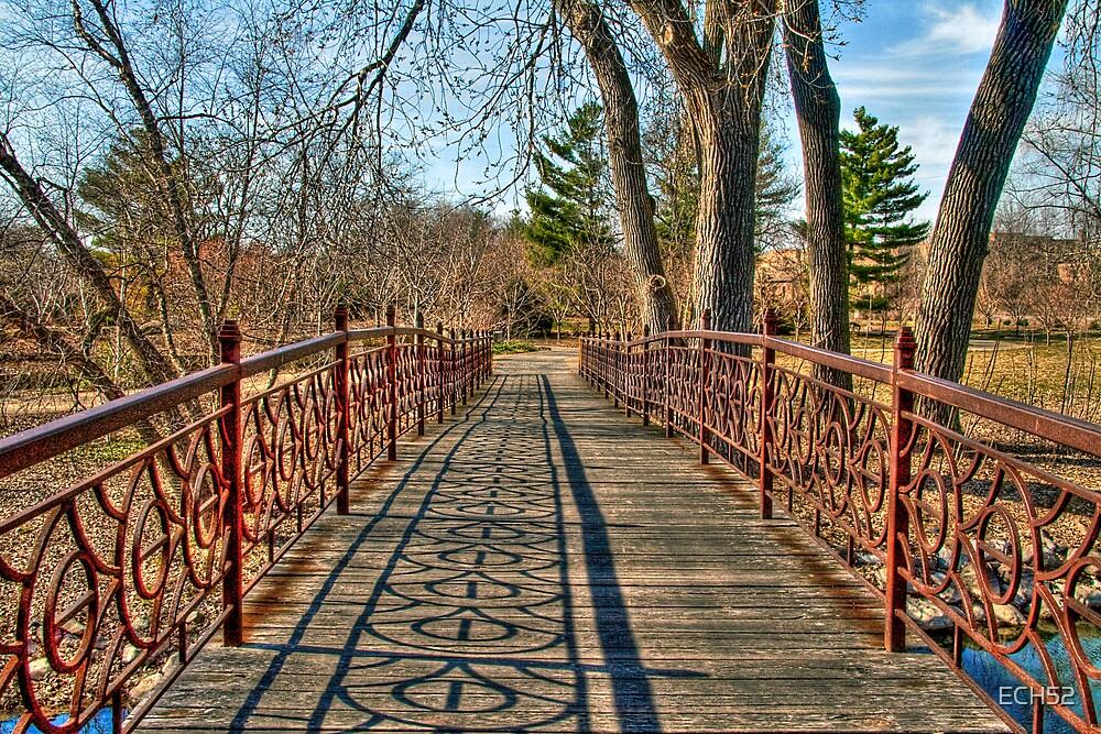 A Pleasant Afternoon Stroll by ECH52
