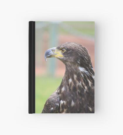 Juvenile Bald Eagle Hardcover Journal