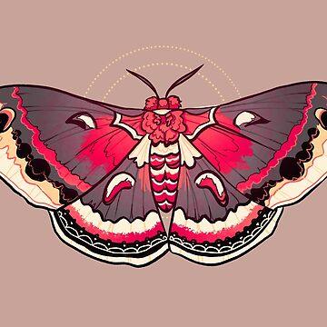 Ceanothus Silkmoth - Moth by FionaCreates72