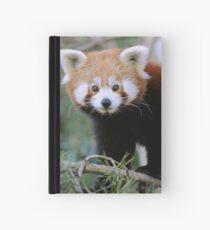 LITTLE EXPLORER Hardcover Journal