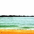 Turquoise Beach Scenery by Cynthia48