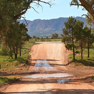 Creek crossing, Flinders Ranges, Australia by FranWest