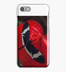 Butterfly on Red Leaf iPhone Case/Skin
