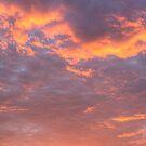 African sunset by Lauren Banks
